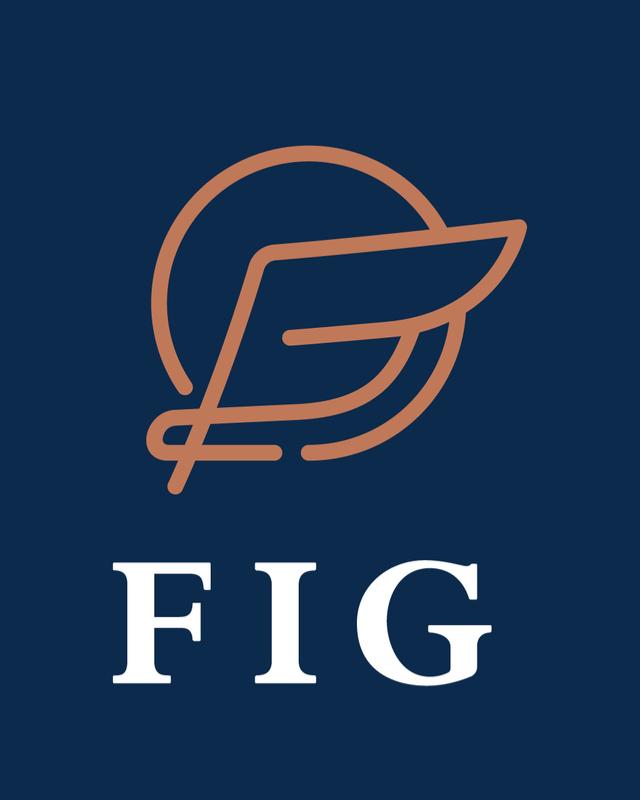 FIG Expert en gestion